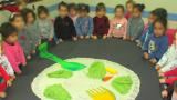 מעון-דובדבן-אלעד-לומדים-על-הגינה
