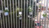 מעון-יום-דובדבן-גינת-תבלינים
